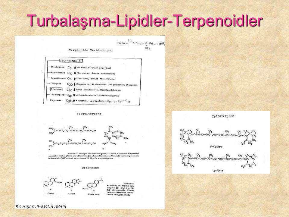 Turbalaşma-Lipidler-Terpenoidler