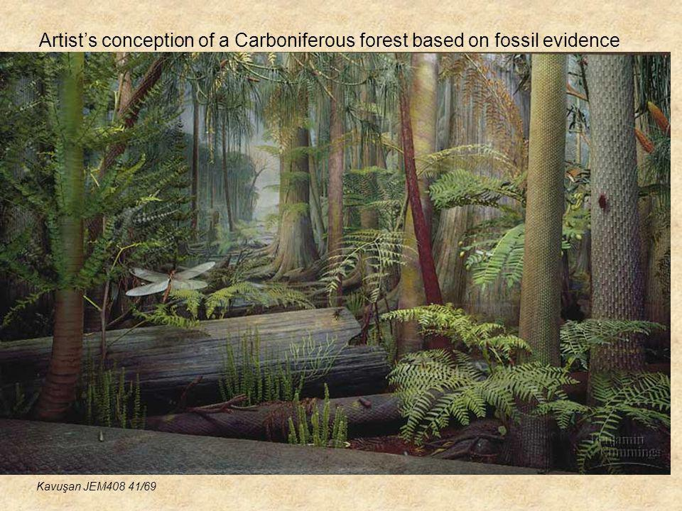 Artist's conception of a Carboniferous forest based on fossil evidence
