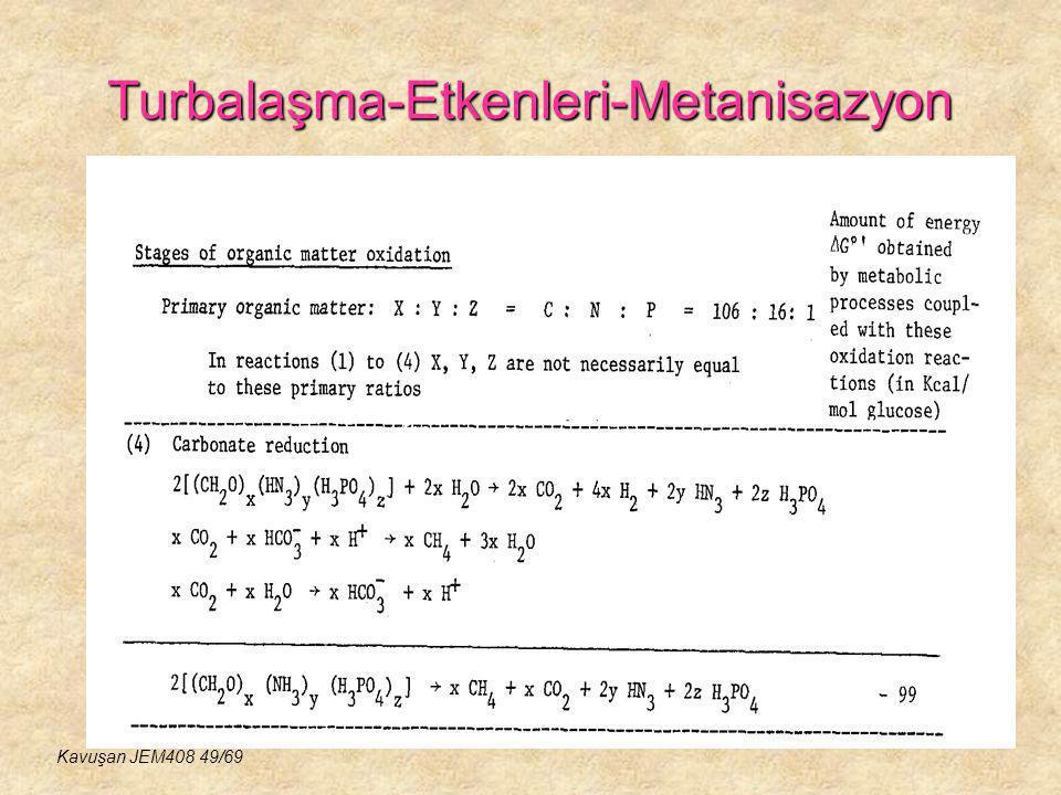 Turbalaşma-Etkenleri-Metanisazyon