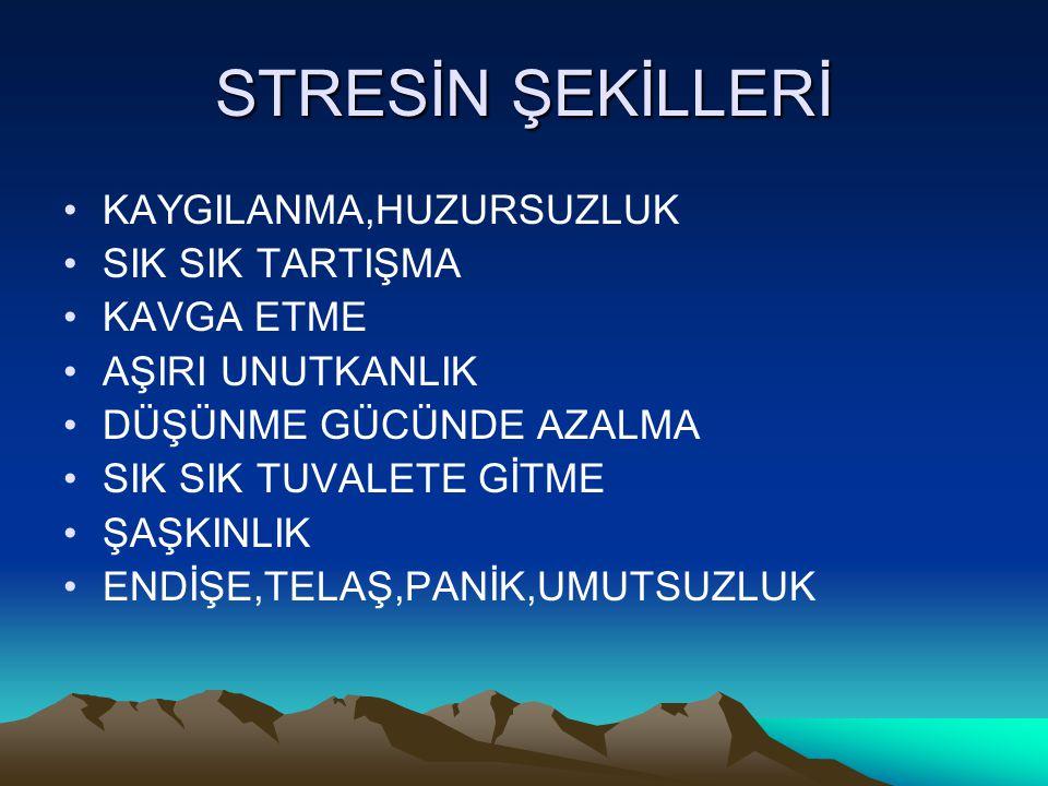 STRESİN ŞEKİLLERİ KAYGILANMA,HUZURSUZLUK SIK SIK TARTIŞMA KAVGA ETME