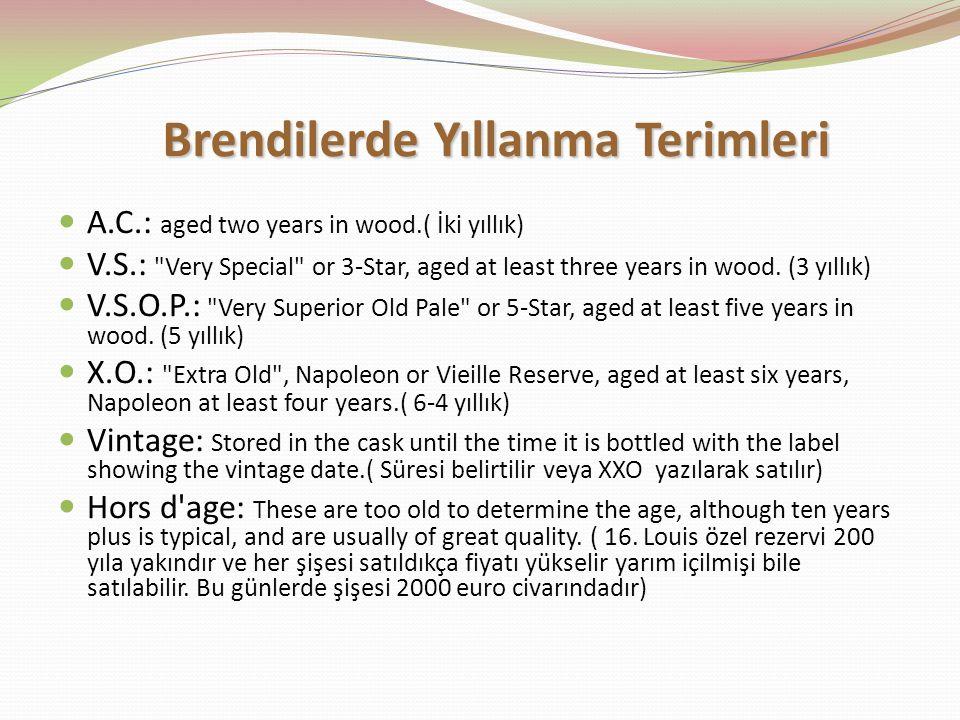 Brendilerde Yıllanma Terimleri
