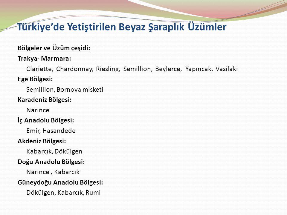 Türkiye'de Yetiştirilen Beyaz Şaraplık Üzümler