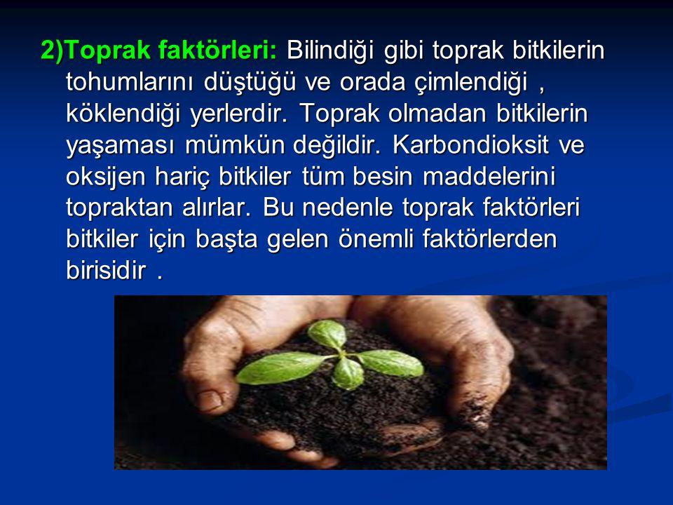 2)Toprak faktörleri: Bilindiği gibi toprak bitkilerin tohumlarını düştüğü ve orada çimlendiği , köklendiği yerlerdir.