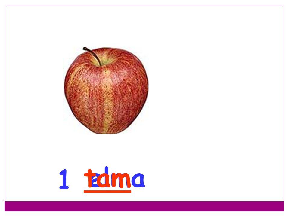 tam elma 1