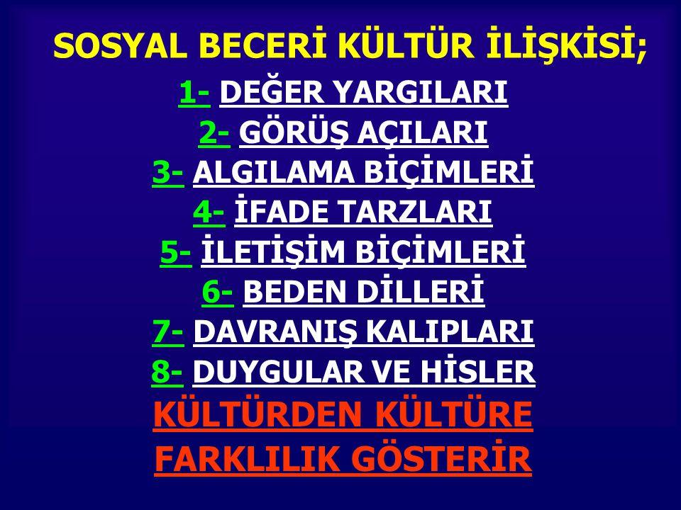 SOSYAL BECERİ KÜLTÜR İLİŞKİSİ;