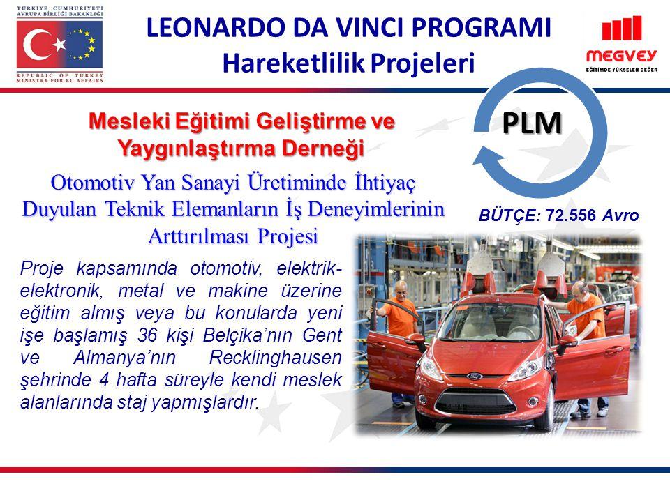 PLM LEONARDO DA VINCI PROGRAMI Hareketlilik Projeleri