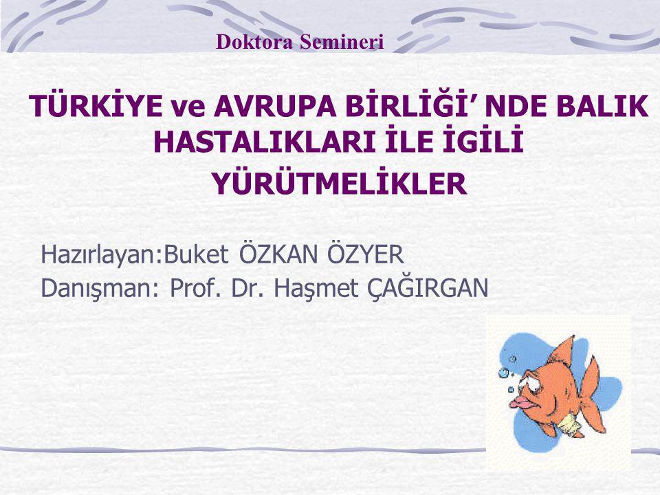 Hazırlayan:Buket ÖZKAN ÖZYER Danışman: Prof. Dr. Haşmet ÇAĞIRGAN