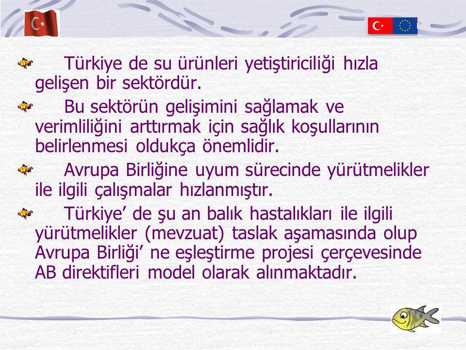 Türkiye de su ürünleri yetiştiriciliği hızla gelişen bir sektördür.