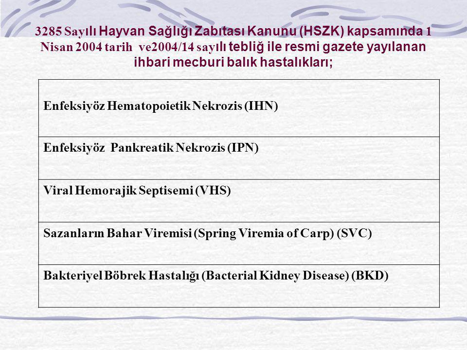 3285 Sayılı Hayvan Sağlığı Zabıtası Kanunu (HSZK) kapsamında 1 Nisan 2004 tarih ve2004/14 sayılı tebliğ ile resmi gazete yayılanan ihbari mecburi balık hastalıkları;