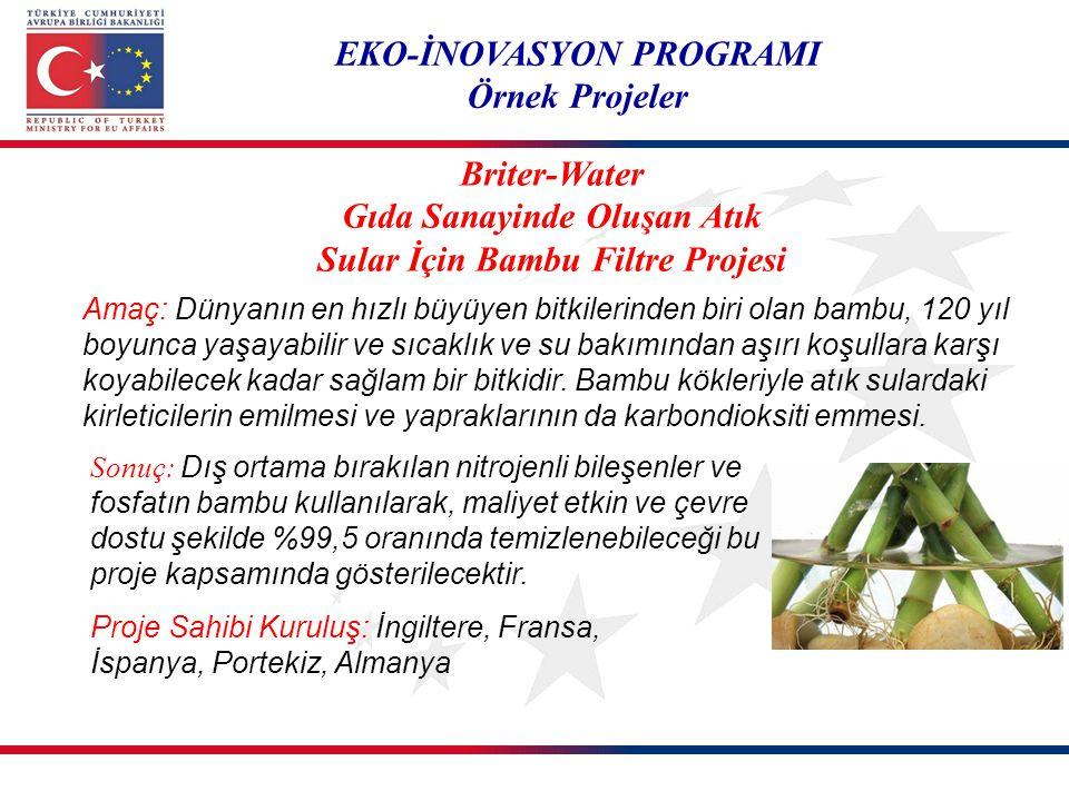 EKO-İNOVASYON PROGRAMI Örnek Projeler