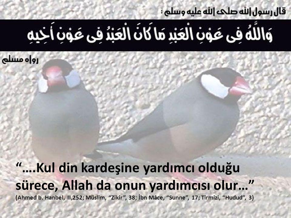 ….Kul din kardeşine yardımcı olduğu sürece, Allah da onun yardımcısı olur… (Ahmed b.