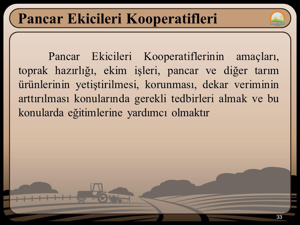 Pancar Ekicileri Kooperatifleri