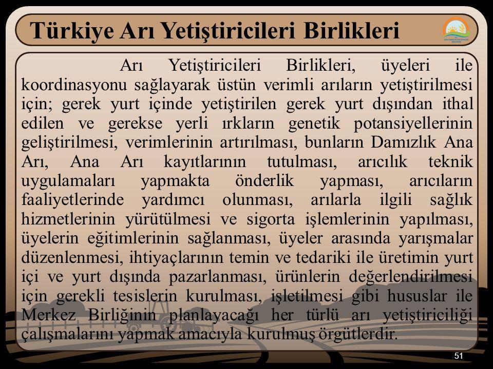 Türkiye Arı Yetiştiricileri Birlikleri