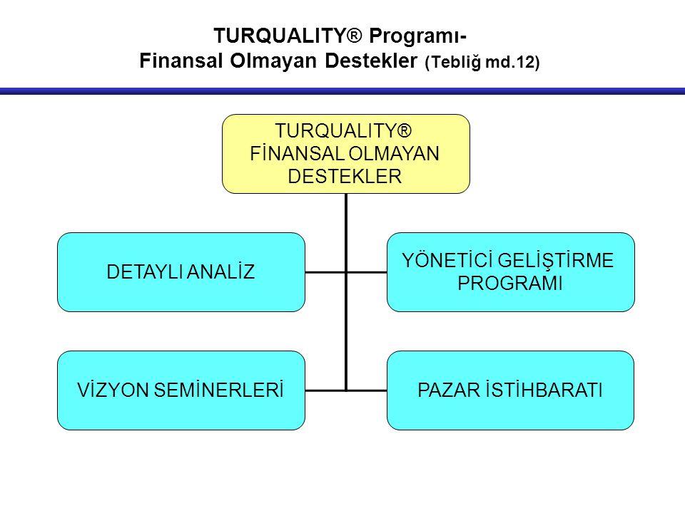 TURQUALITY® Programı- Finansal Olmayan Destekler (Tebliğ md.12)