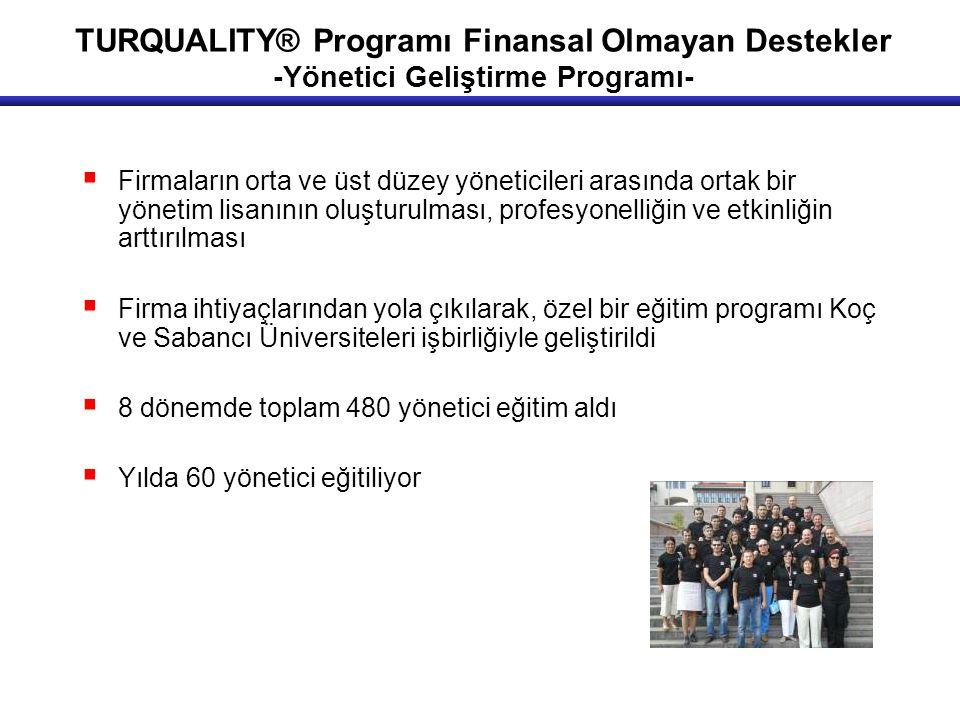 TURQUALITY® Programı Finansal Olmayan Destekler