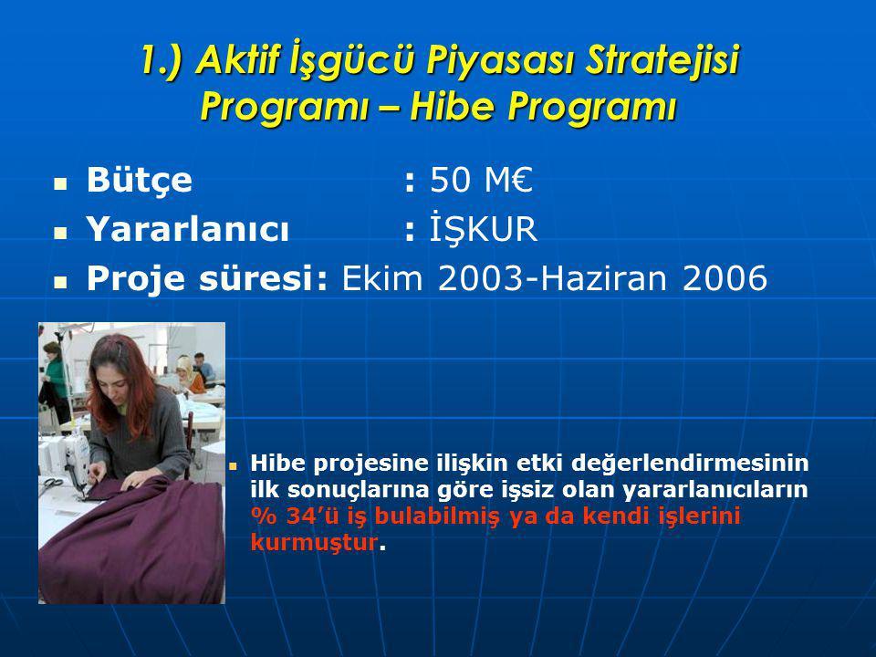 1.) Aktif İşgücü Piyasası Stratejisi Programı – Hibe Programı