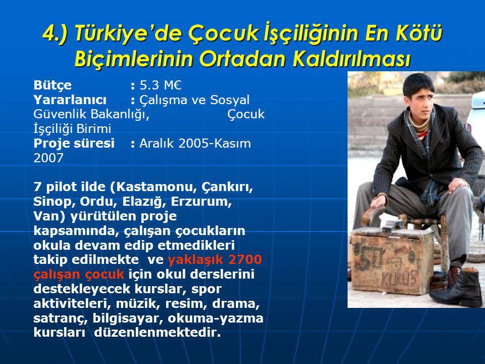 4.) Türkiye'de Çocuk İşçiliğinin En Kötü Biçimlerinin Ortadan Kaldırılması