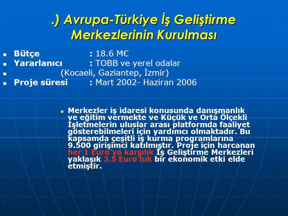 .) Avrupa-Türkiye İş Geliştirme Merkezlerinin Kurulması