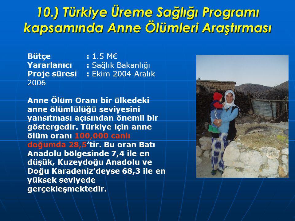 10.) Türkiye Üreme Sağlığı Programı kapsamında Anne Ölümleri Araştırması