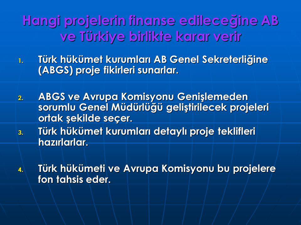 Hangi projelerin finanse edileceğine AB ve Türkiye birlikte karar verir