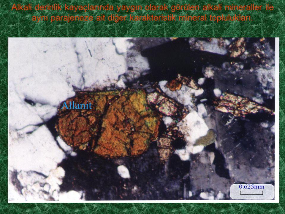 Alkali derinlik kayaçlarında yaygın olarak görülen alkali mineraller ile aynı parajeneze ait diğer karakteristik mineral toplulukları.