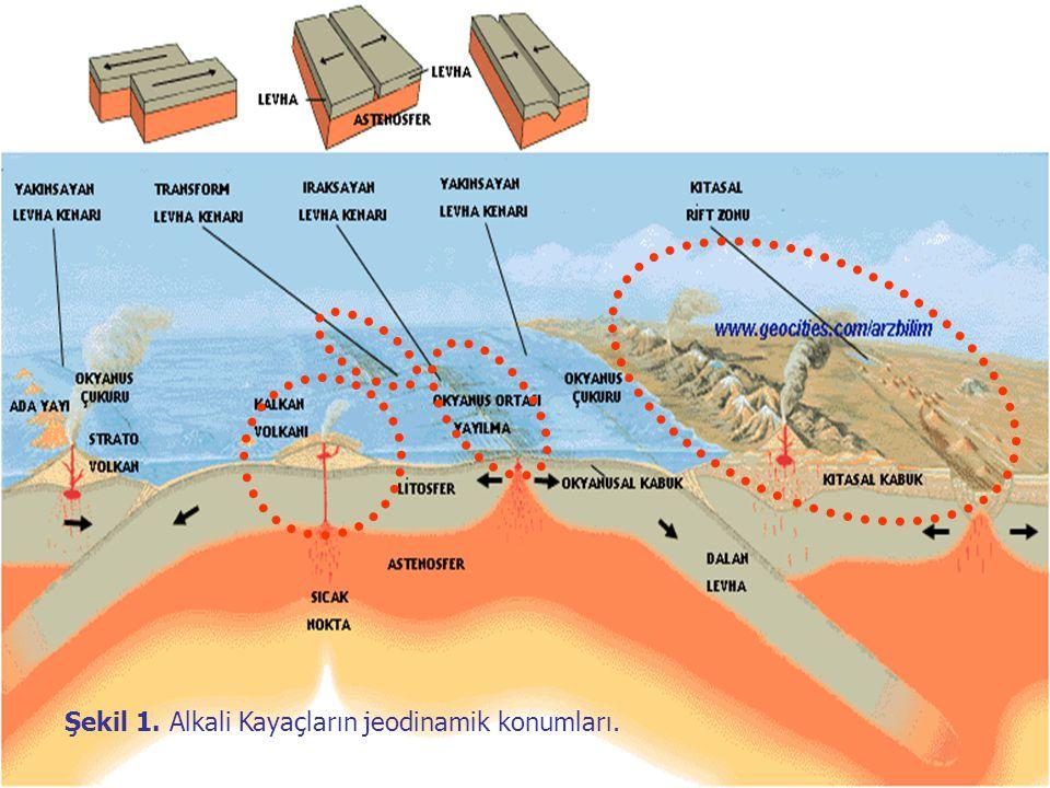 Şekil 1. Alkali Kayaçların jeodinamik konumları.