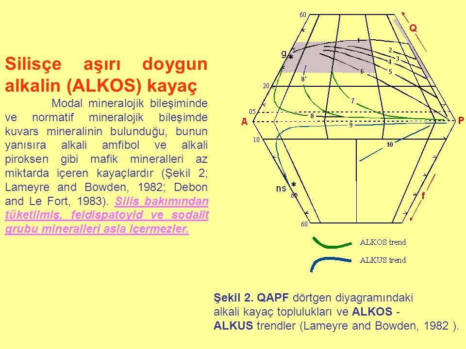 Silisçe aşırı doygun alkalin (ALKOS) kayaç