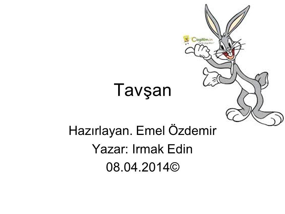 Hazırlayan. Emel Özdemir Yazar: Irmak Edin 08.04.2014©