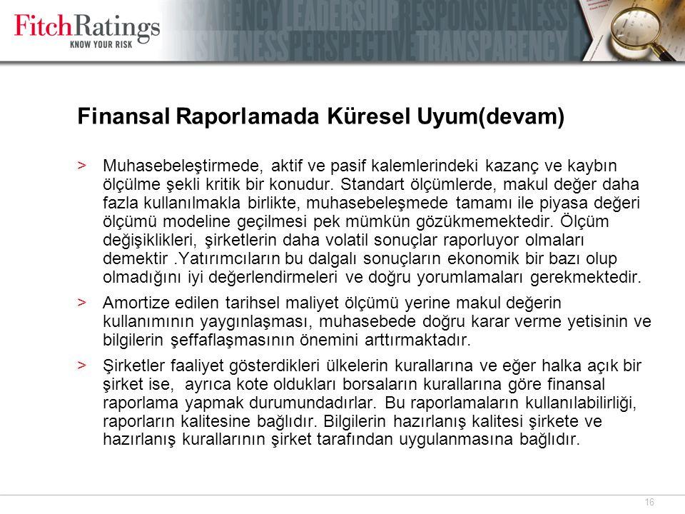 Finansal Raporlamada Küresel Uyum(devam)