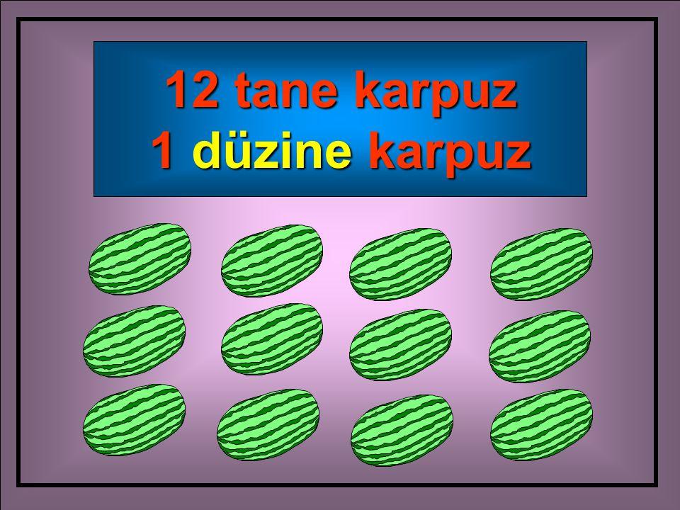 12 tane karpuz 1 düzine karpuz