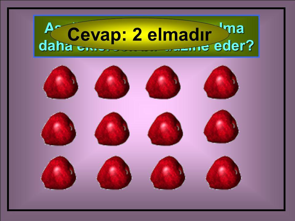 Aşağıdaki elmalara kaç elma daha eklersek bir düzine eder