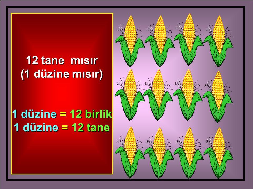 12 tane mısır (1 düzine mısır) 1 düzine = 12 birlik 1 düzine = 12 tane