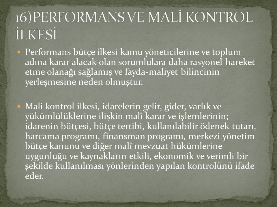 16)PERFORMANS VE MALİ KONTROL İLKESİ