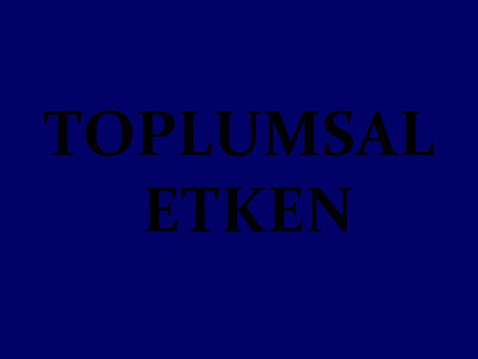 TOPLUMSAL ETKEN