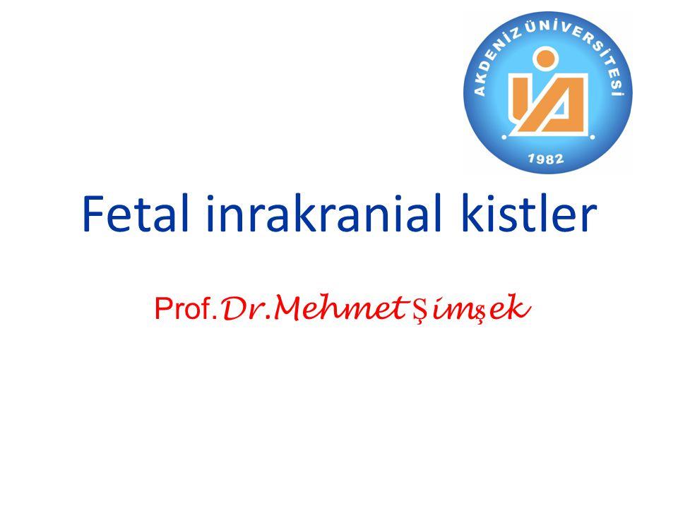 Fetal inrakranial kistler