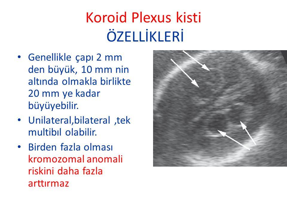 Koroid Plexus kisti ÖZELLİKLERİ