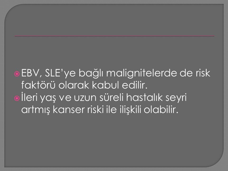 EBV, SLE'ye bağlı malignitelerde de risk faktörü olarak kabul edilir.
