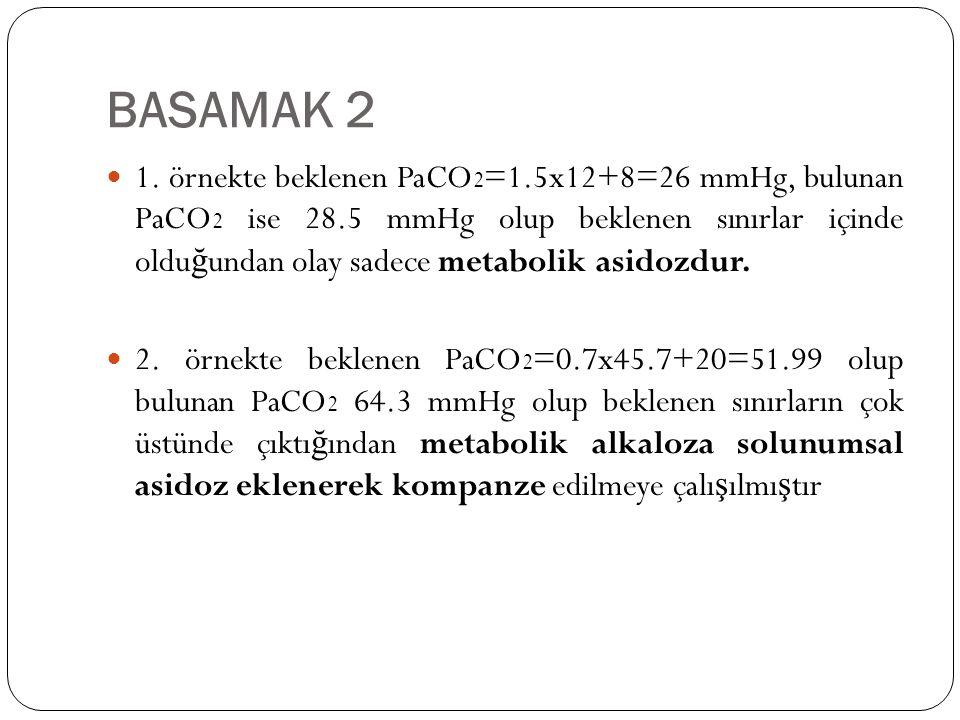 BASAMAK 2