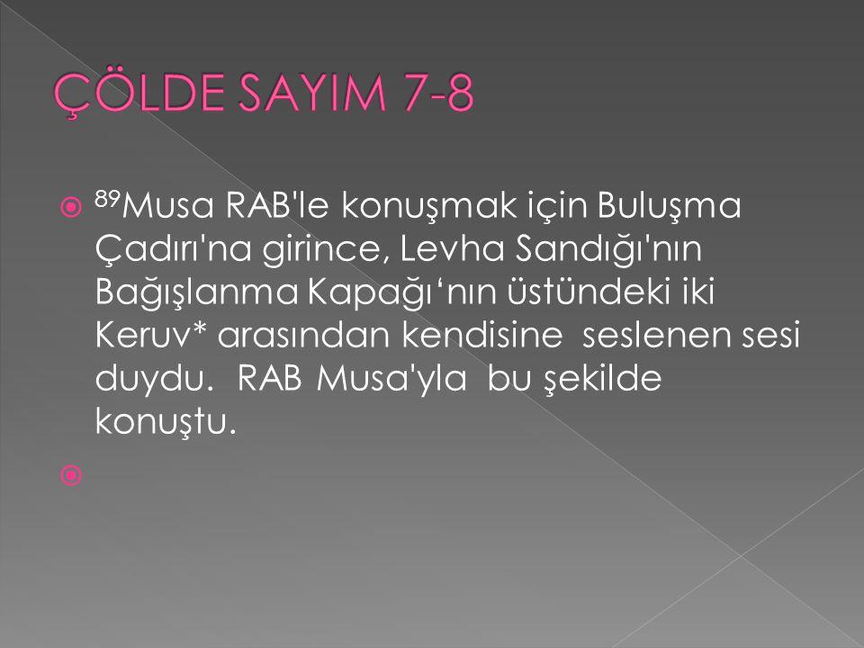 ÇÖLDE SAYIM 7-8