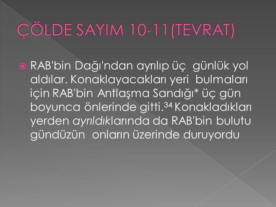 ÇÖLDE SAYIM 10-11(TEVRAT)