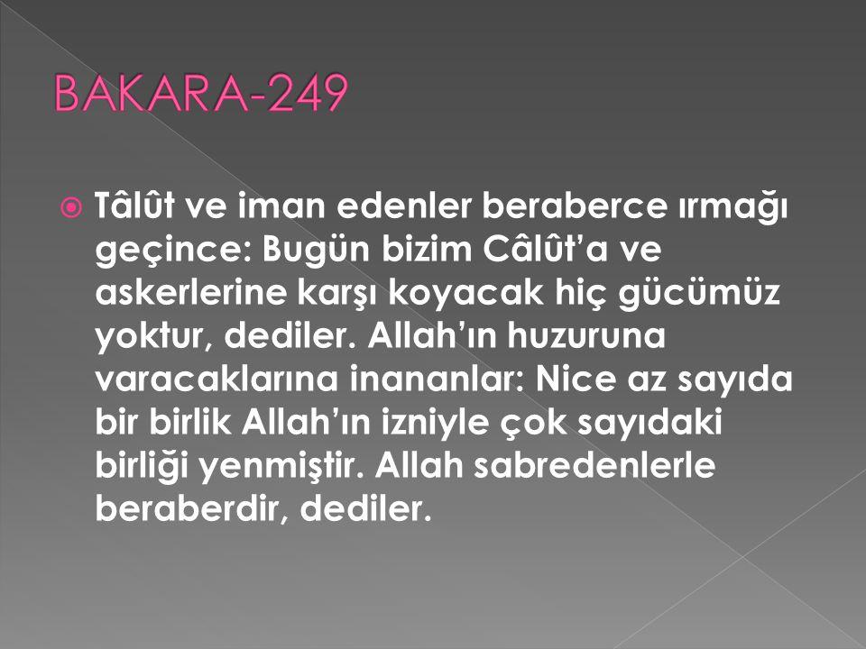 BAKARA-249