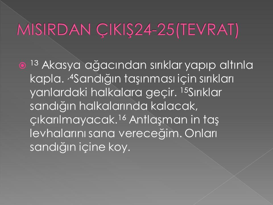 MISIRDAN ÇIKIŞ24-25(TEVRAT)