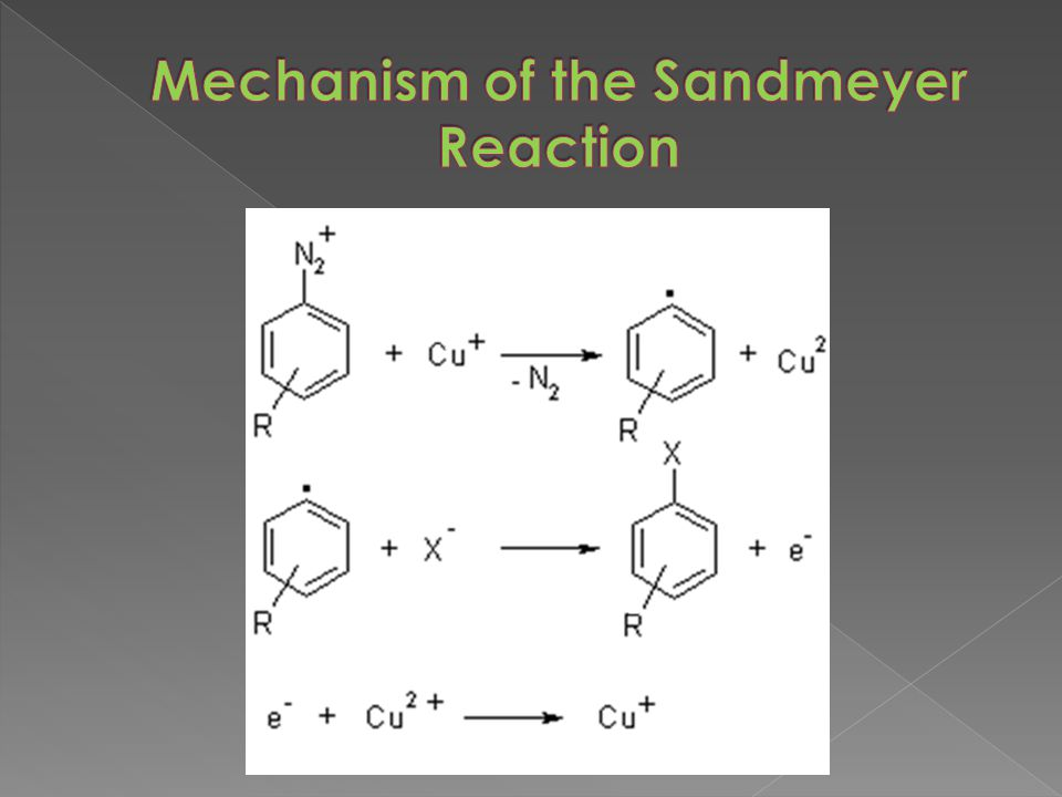 Mechanism of the Sandmeyer Reaction