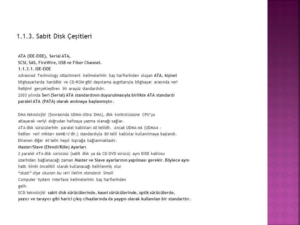 1.1.3. Sabit Disk Çeşitleri