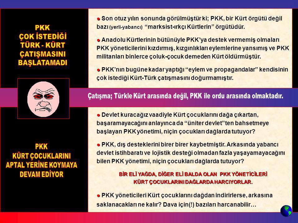 ● Son otuz yılın sonunda görülmüştür ki; PKK, bir Kürt örgütü değil bazı (yerli-yabancı) marksist-ırkçı Kürtlerin örgütüdür.