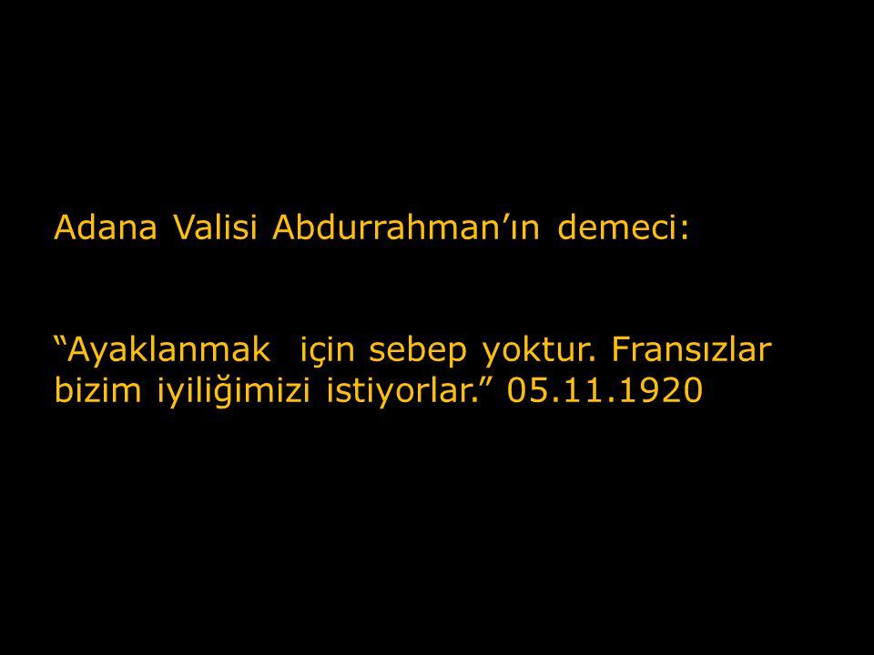 Adana Valisi Abdurrahman'ın demeci: Ayaklanmak için sebep yoktur