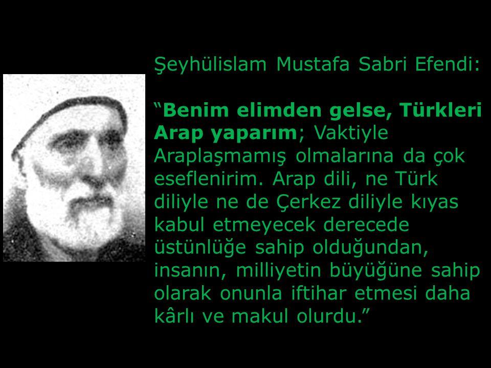 Şeyhülislam Mustafa Sabri Efendi:
