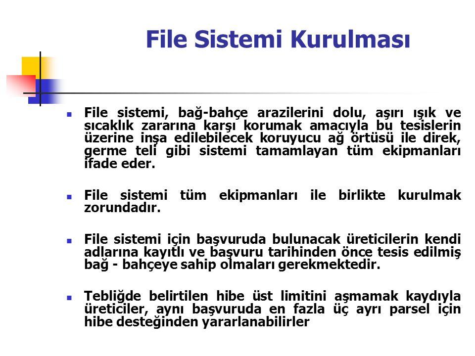 File Sistemi Kurulması
