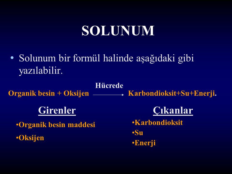 SOLUNUM Solunum bir formül halinde aşağıdaki gibi yazılabilir.