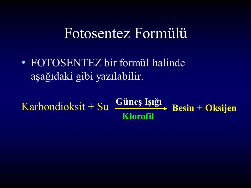 Fotosentez Formülü FOTOSENTEZ bir formül halinde aşağıdaki gibi yazılabilir. Güneş Işığı. Karbondioksit + Su.